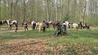 Initiation, Balade et Rando à cheval