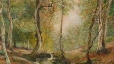 """Exposition """"Paysages et Jardins"""" de Christian Dhote"""