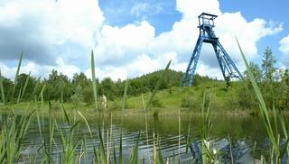Site Sabatier - Raismes