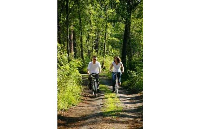 Vélos 1 - Saint-Amand-les-Eaux