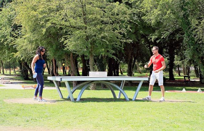 Tennis de table 1 - Raismes